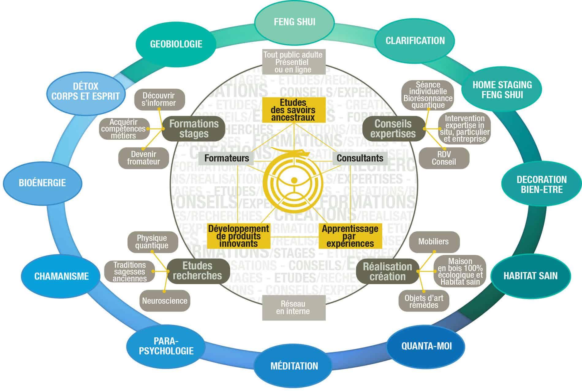 arborescence disciplines et formations bien-être